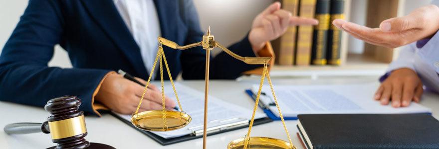 Professionnel du droit